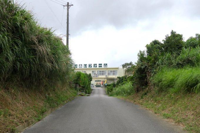 沖縄・今帰仁「あいあいファーム」が見えてきた。