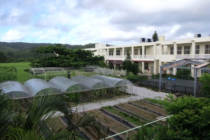 沖縄・今帰仁「あいあいファーム」に宿泊した翌朝。