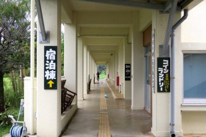 沖縄・今帰仁「あいあいファーム」の宿泊棟は湧川小学校の校舎跡だ。