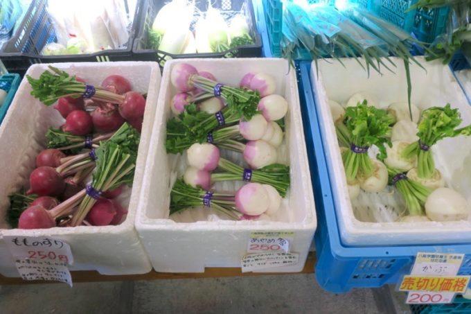 札幌「八紘学園 農産物直売所」では採れたての野菜がいっぱい販売されていた(その1)