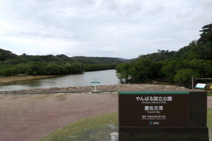沖縄本島北部の東村にある「慶佐次湾のヒルギ林」を訪れた。