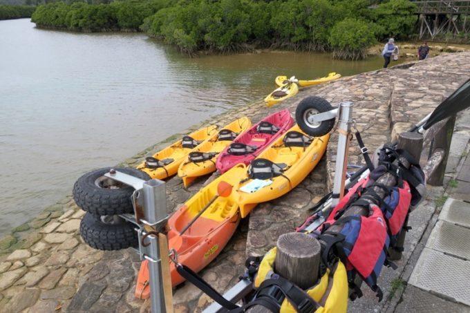 沖縄本島北部・東村「慶佐次湾のヒルギ林」を巡るマングローブカヤックは可能。