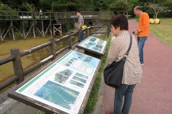 沖縄本島北部・東村「慶佐次湾のヒルギ林」の見学に出発。