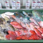沖縄市「泡瀬漁港 パヤオ直売所」いかにも沖縄らしい色鮮やかな鮮魚。