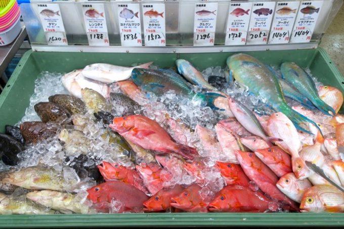 沖縄市「泡瀬漁港 パヤオ直売店」いかにも沖縄らしい色鮮やかな鮮魚。