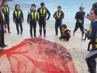 伊江島の追い込み漁体験を終えて浜に戻ってきたブロガーたち。