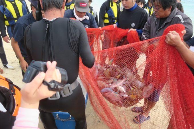 伊江島の追い込み漁体験で獲った魚を運ぶ。