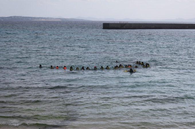 伊江島で追い込み漁体験しているブロガーたち(寄り)