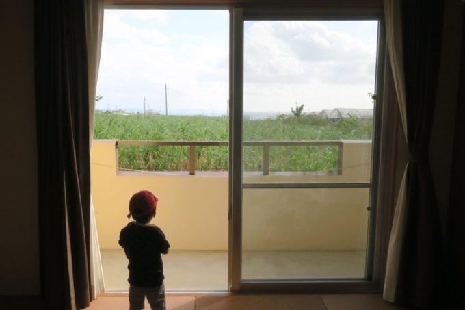 読谷「ホテルむら咲むら」から見える景色はざわわ、ざわわであった。