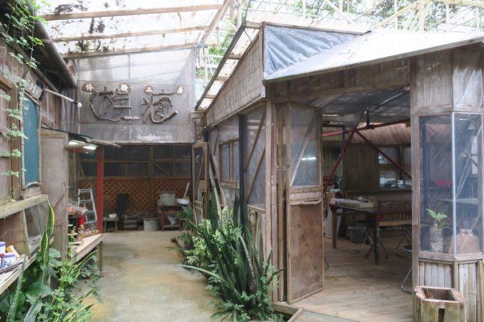 読谷「ホテルむら咲むら」バナナ園の中にも体験工房がある。