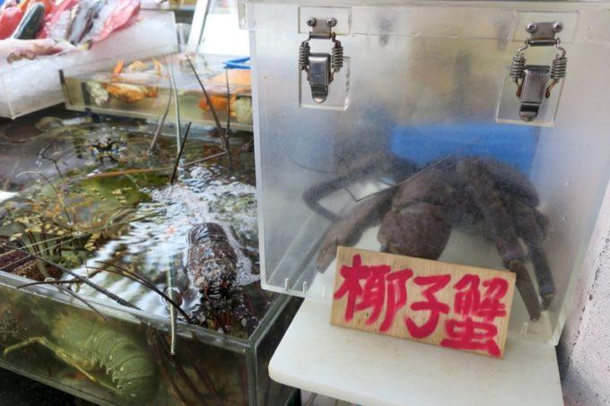 2019年6月16日で一時閉鎖する、那覇・牧志公設市場1階の様子(ケースに入れられた椰子蟹と伊勢海老)