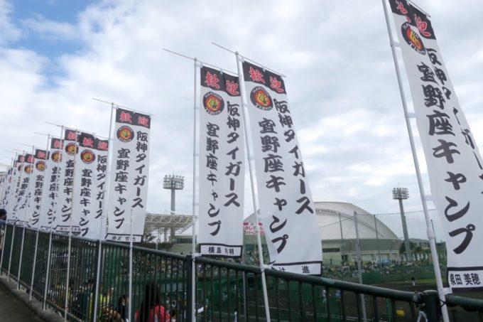 阪神タイガースの宜野座キャンプ(プロ野球春季キャンプ2019)に出ていたノボリ。