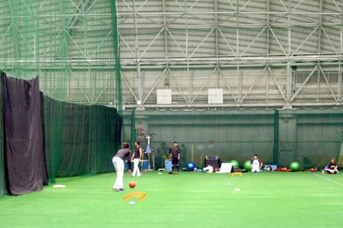 阪神タイガースの宜野座キャンプ(プロ野球春季キャンプ2019)で見学した宜野座ドーム。