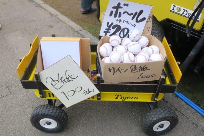 阪神タイガースの宜野座キャンプ(プロ野球春季キャンプ2019)ではサイン色紙やボール、マジックペンなどをよく見かけた。