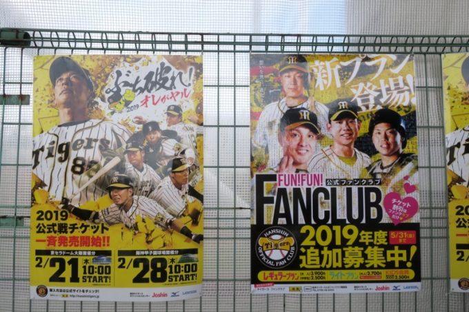 阪神タイガースの宜野座キャンプ(プロ野球春季キャンプ2019)のポスター。