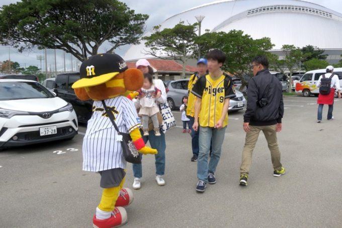阪神タイガースの宜野座キャンプ(プロ野球春季キャンプ2019)に現れたキー太くん。