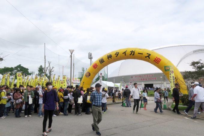 阪神タイガースの宜野座キャンプ(プロ野球春季キャンプ2019)の人だかり。