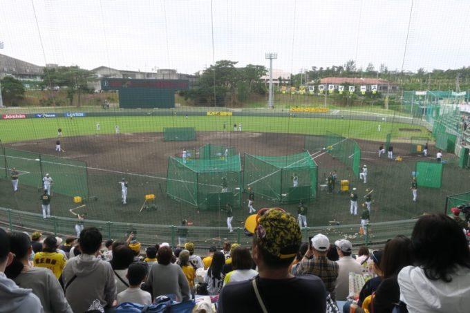 阪神タイガースの宜野座キャンプ(プロ野球春季キャンプ2019)をバックネット裏から。