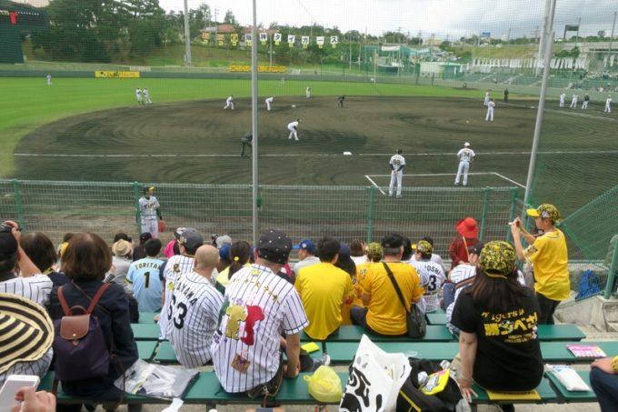 阪神タイガースの宜野座キャンプ(プロ野球春季キャンプ2019)の三塁側内野席。