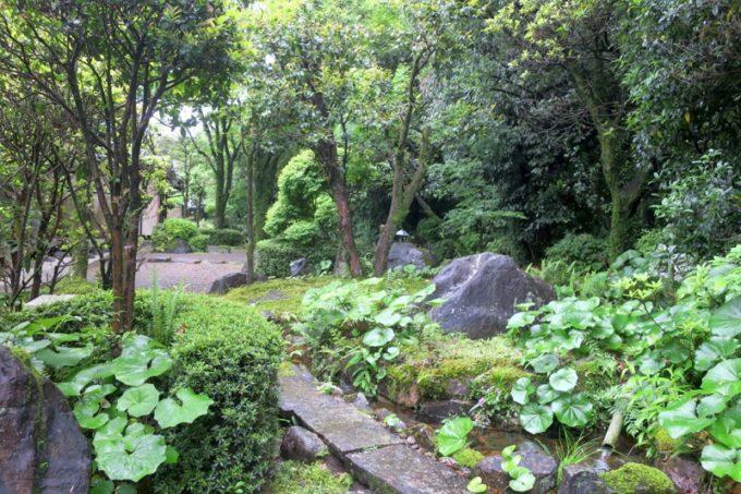 宮崎・綾町「酒泉の杜 綾陽亭」離れの裏庭。