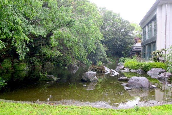 宮崎・綾町「酒泉の杜 綾陽亭」の裏庭と池。