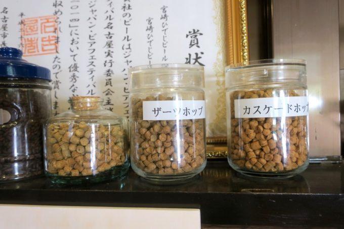 「宮崎ひでじビール」にあったホップの展示(その1)