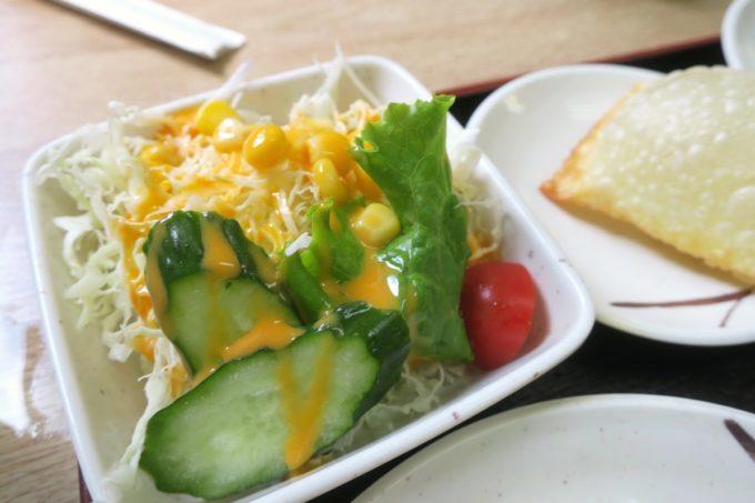 名護「ブラジル食堂」ポルコ・アサードついてるサラダ。