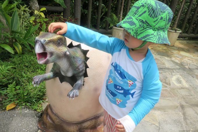 名護「DINO 恐竜 PARK やんばる亜熱帯の森」卵から生まれたばかりの恐竜とお子サマー。