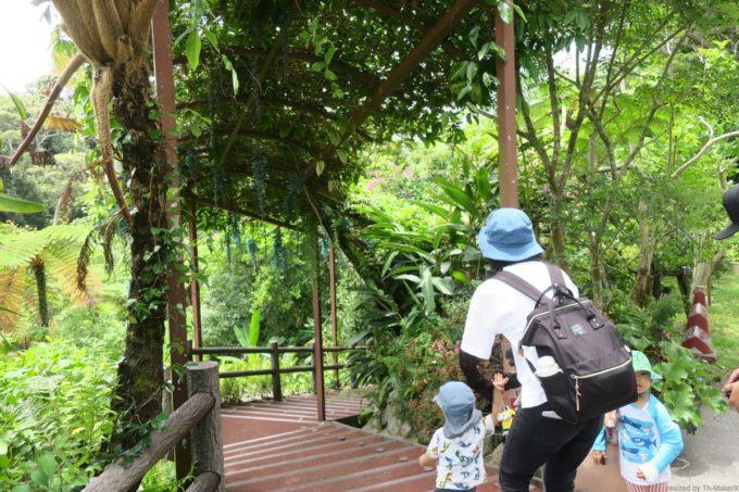 名護「DINO 恐竜 PARK やんばる亜熱帯の森」のコースを進む。