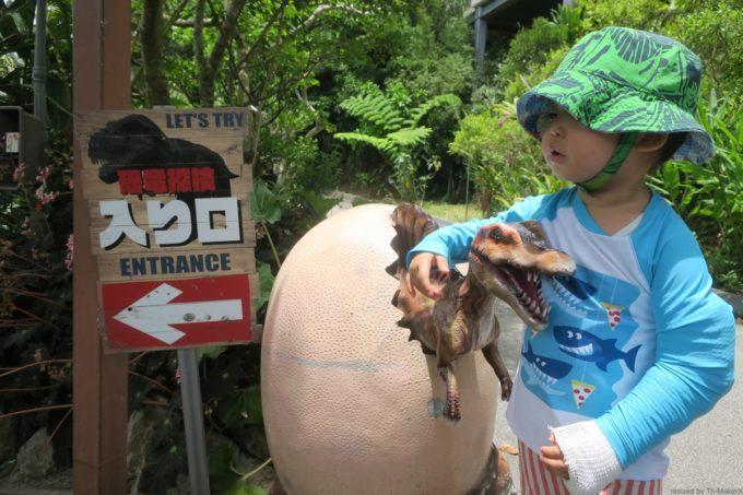 名護「DINO 恐竜 PARK やんばる亜熱帯の森」卵から生まれたばかりの恐竜だったら怖くないお子サマー。