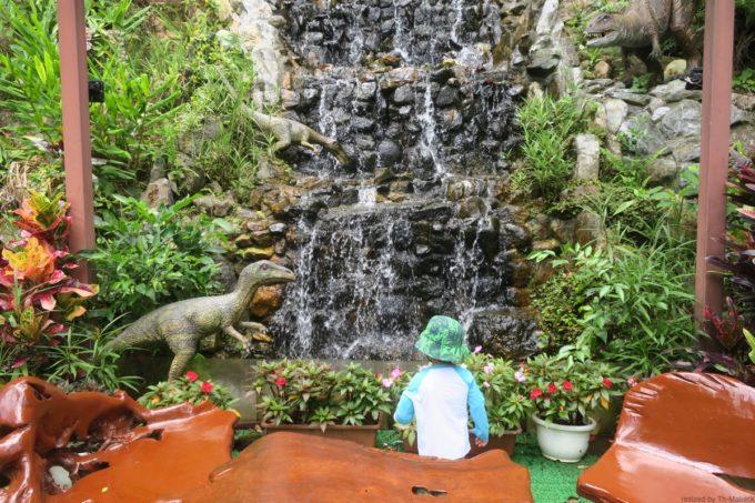 名護「DINO 恐竜 PARK やんばる亜熱帯の森」で流れる水場を発見