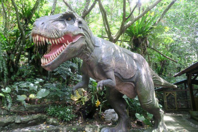 名護「DINO 恐竜 PARK やんばる亜熱帯の森」でっかいティラノザウルスが登場。