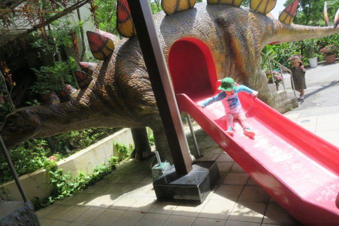 名護「DINO 恐竜 PARK やんばる亜熱帯の森」恐竜のお腹から滑り台。