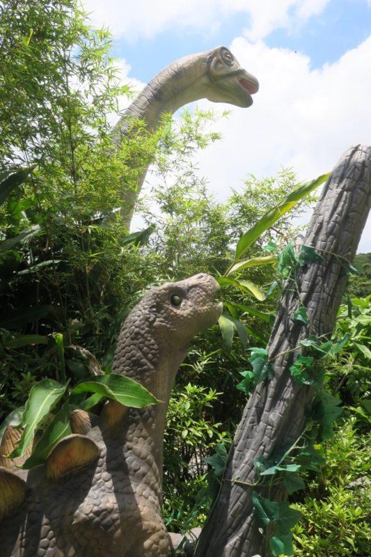 名護「DINO 恐竜 PARK やんばる亜熱帯の森」見上げるとそこには恐竜。