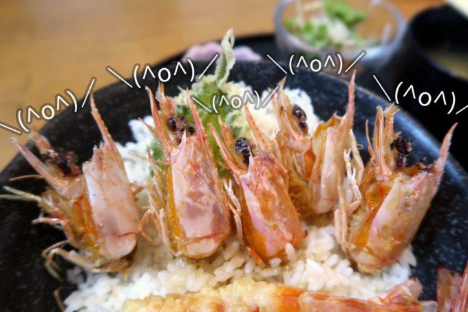 沖縄県宜野座村「車えびレストラン 球屋」エビの頭がフェスしているように見える。