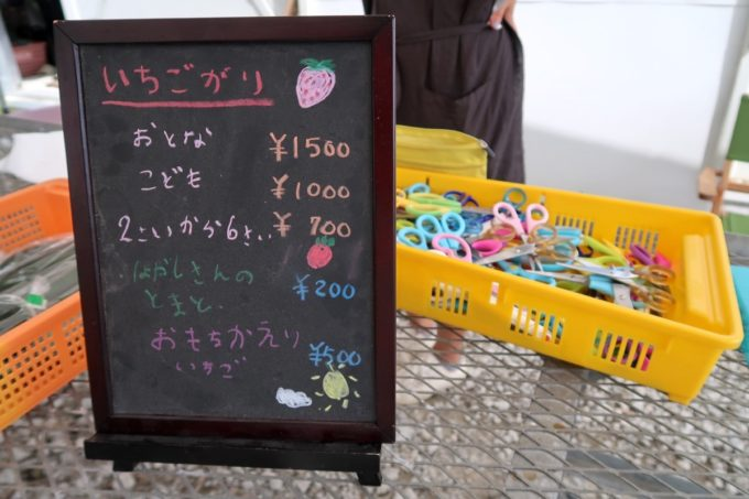 宜野座「ばむせファーム(Bamse Farm)」いちご狩りの料金(おとな1500円、こども1000円、2〜6才700円)、2020年3月時点