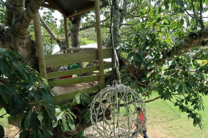 沖縄「東南植物楽園」ツリーハウスがあった