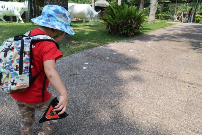 沖縄「東南植物楽園」道に何かの足跡。ついていってみよう。