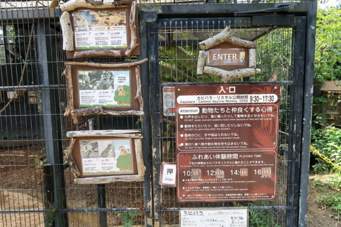 沖縄「東南植物楽園」リスザルとカピバラのふれあい体験時間がある