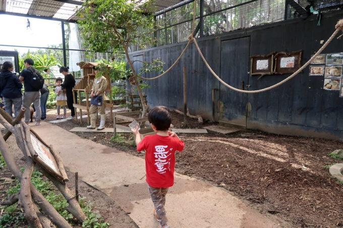 沖縄「東南植物楽園」動物ふれあい広場の小屋に入ってみる