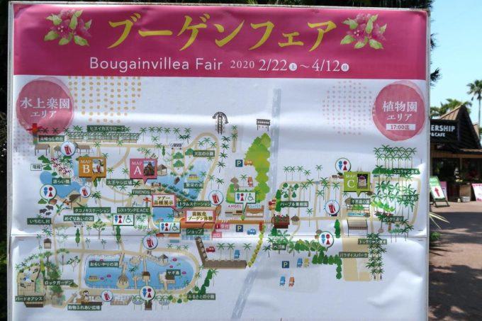 沖縄「東南植物楽園」ブーゲンビリアフェアが行われていた