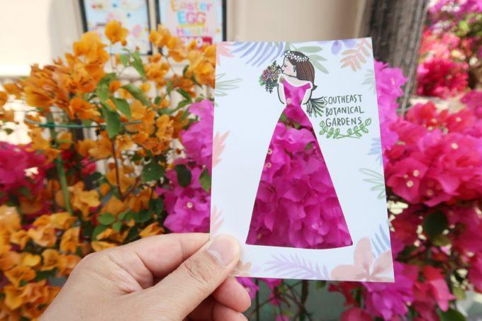 沖縄「東南植物楽園」ブーゲンビリアとボタニカルアートカード
