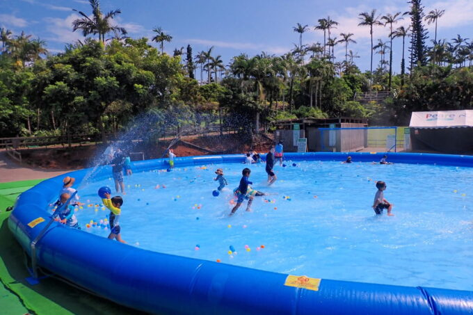 沖縄「東南植物楽園」巨大エアプールで遊んできた