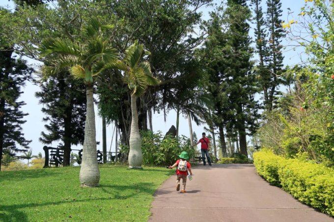 沖縄「東南植物楽園」見晴らしの丘へ向かう登り坂