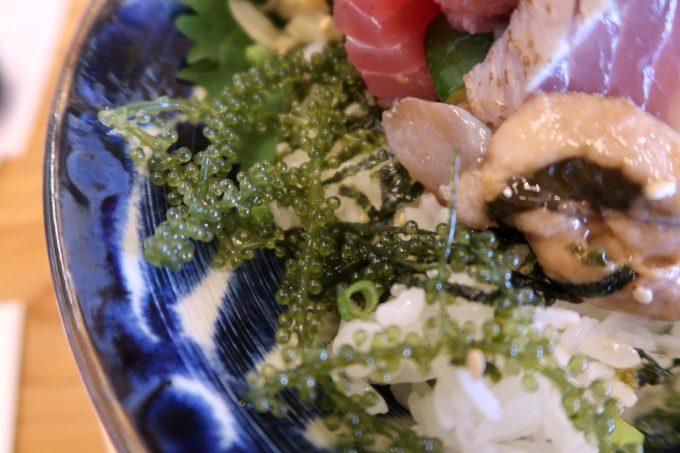 那覇・具志「今いゆ玉しろ」海人のさしみ丼ぶり(1300円)のお刺身の下には海ぶどう