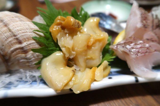 仙台「奥州酒場 ちだちゃん」お刺身のツブ貝がコリコリとウマい