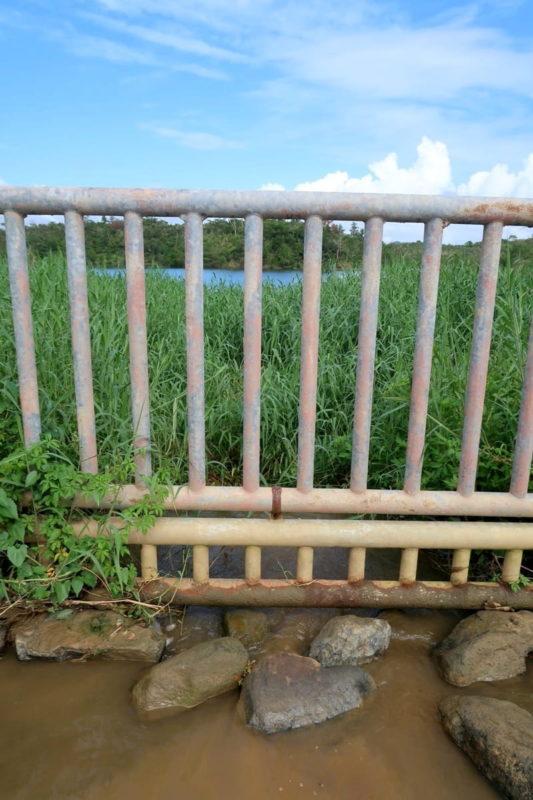沖縄県うるま市「倉敷ダム」川はダムに繋がっているようだった