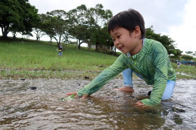 沖縄県うるま市「倉敷ダム」川で水遊びするお子サマー