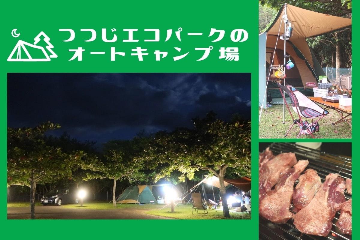 沖縄県東村「つつじエコパーク」キャンプ場のMV