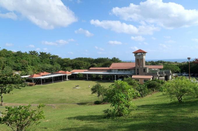 沖縄県東村「つつじエコパーク」を撮影